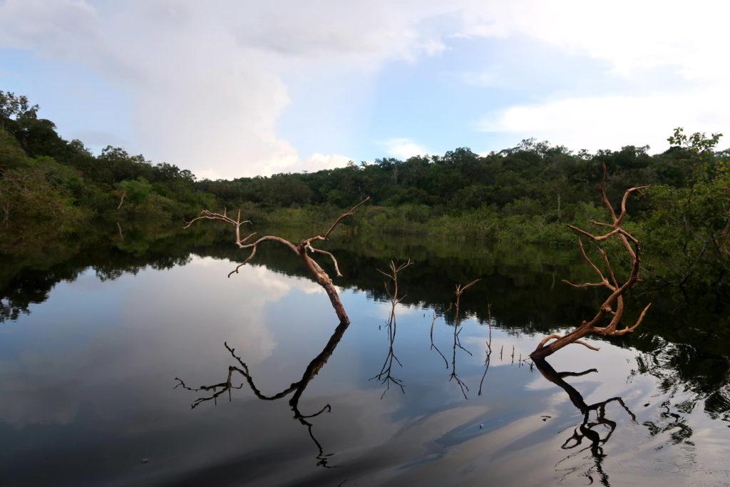 Turismo na Amazônia