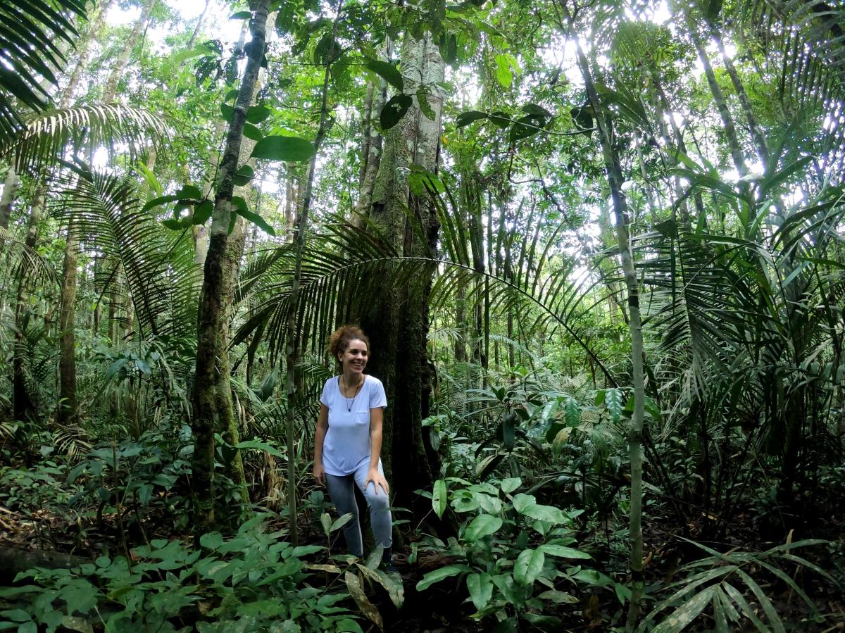 Diretrizes do turismo sustentável